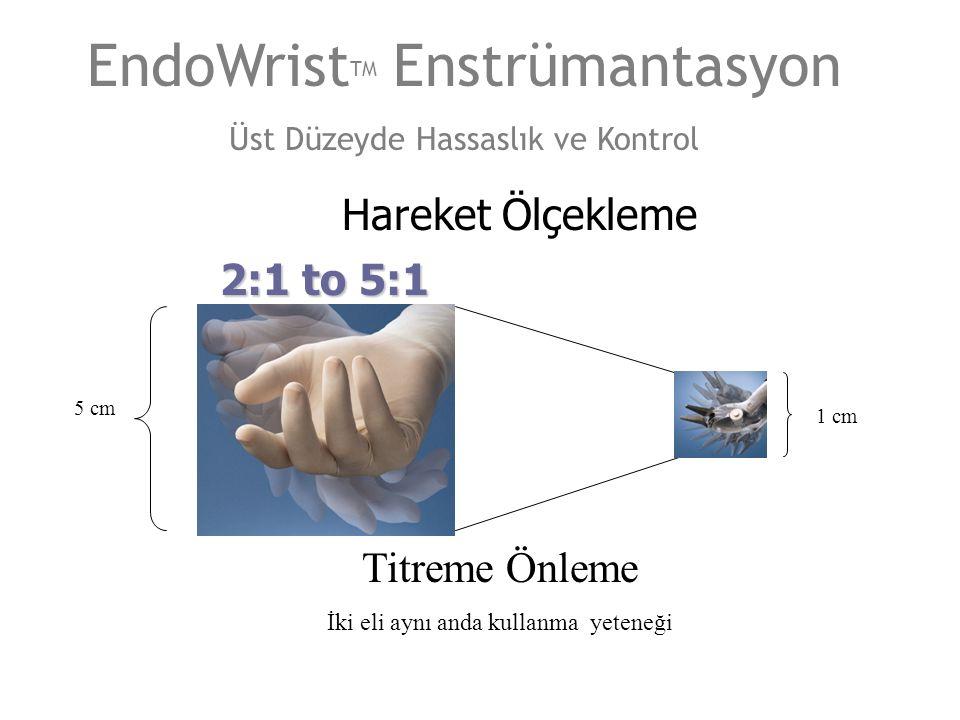EndoWristTM Enstrümantasyon