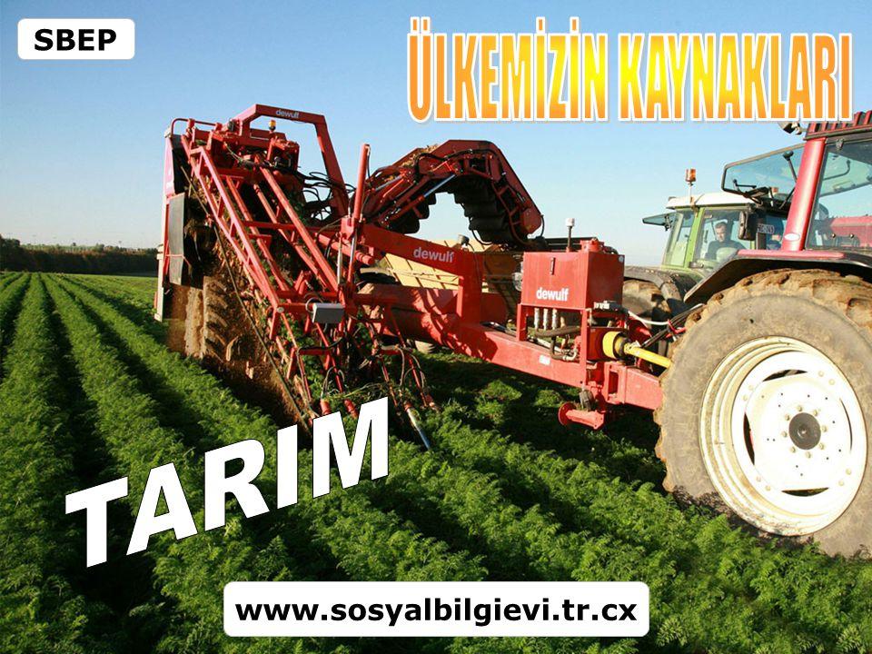 SBEP ÜLKEMİZİN KAYNAKLARI TARIM www.sosyalbilgievi.tr.cx