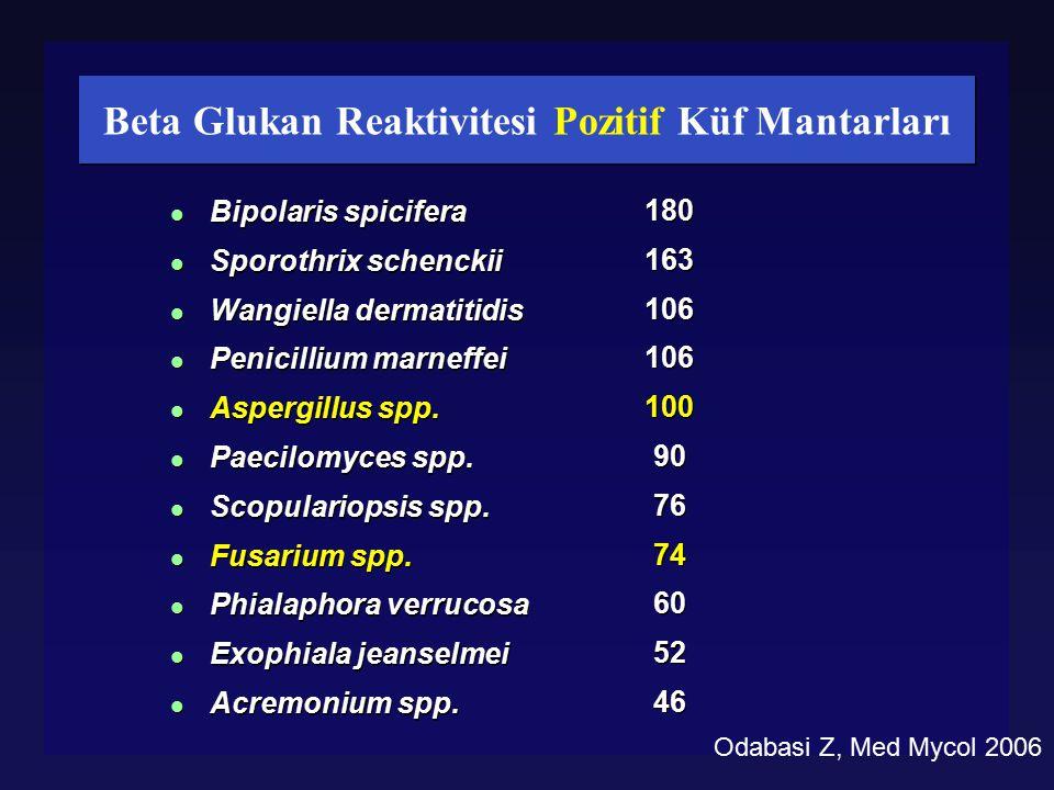 Beta Glukan Reaktivitesi Pozitif Küf Mantarları