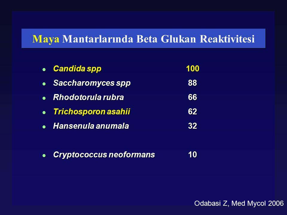 Maya Mantarlarında Beta Glukan Reaktivitesi