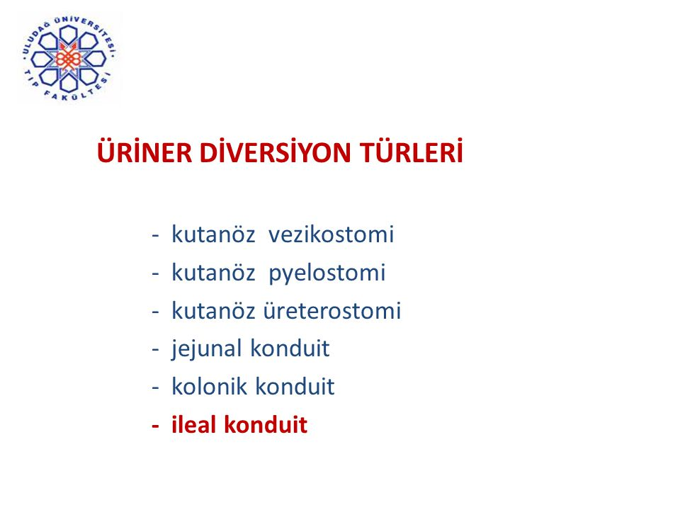 ÜRİNER DİVERSİYON TÜRLERİ