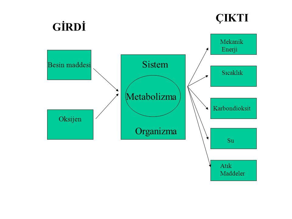 ÇIKTI GİRDİ Sistem Metabolizma Organizma Besin maddesi Oksijen Mekanik