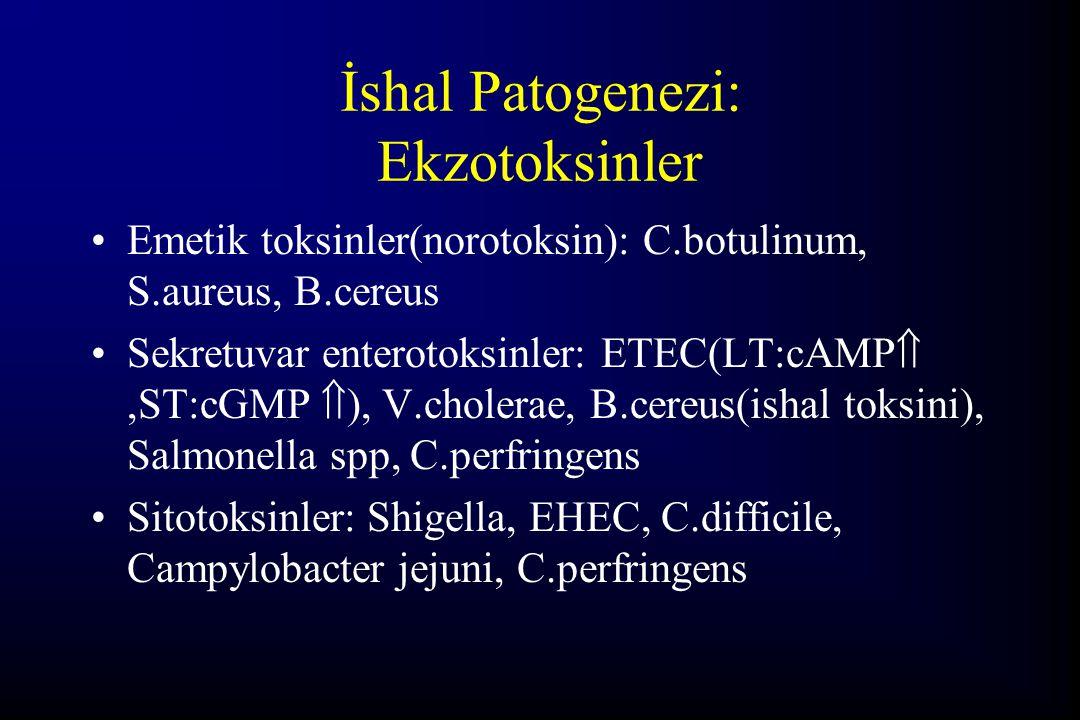 İshal Patogenezi: Ekzotoksinler