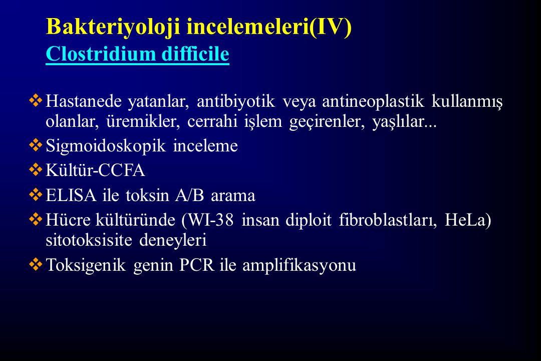 Bakteriyoloji incelemeleri(IV)