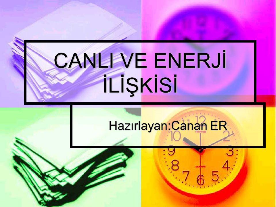 CANLI VE ENERJİ İLİŞKİSİ
