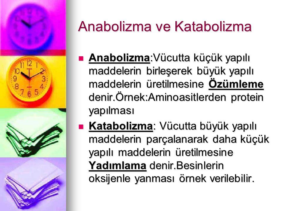 Anabolizma ve Katabolizma
