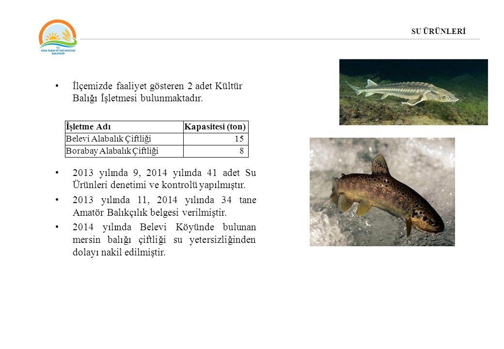 SU ÜRÜNLERİ İlçemizde faaliyet gösteren 2 adet Kültür Balığı İşletmesi bulunmaktadır.