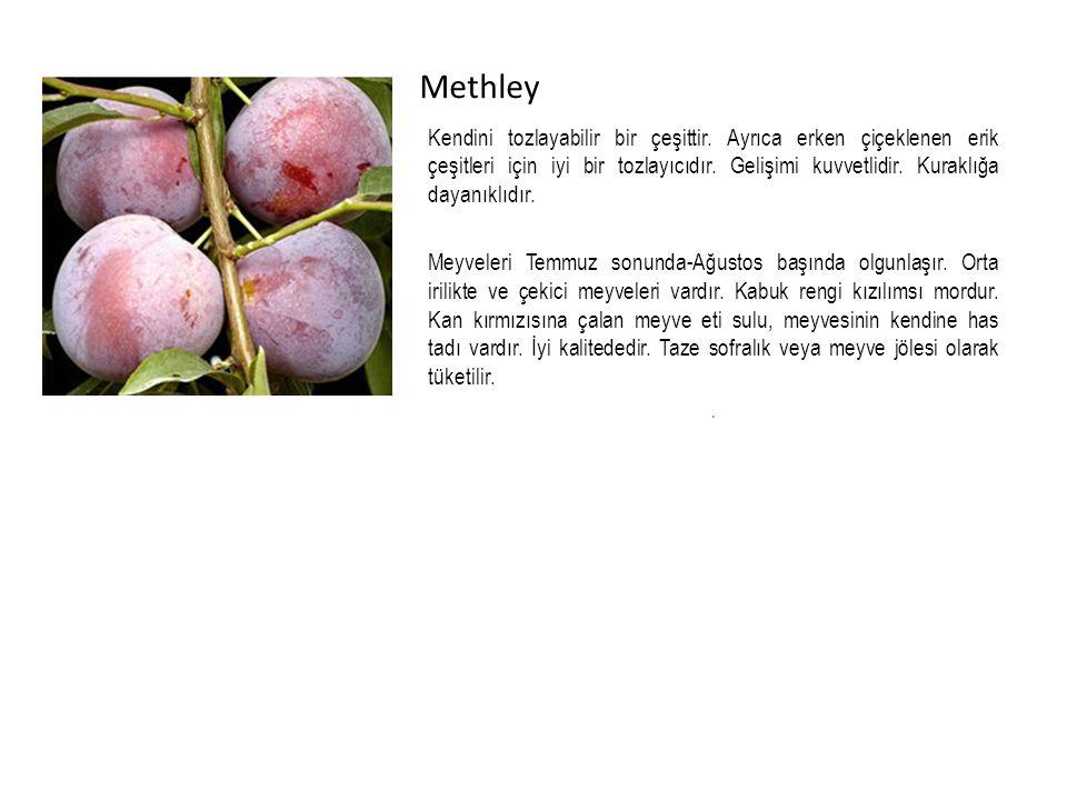 Methley