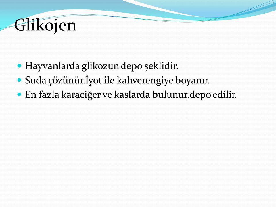 Glikojen Hayvanlarda glikozun depo şeklidir.