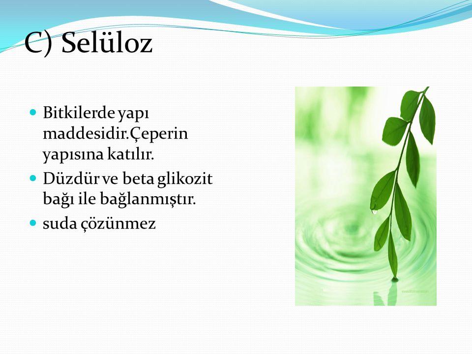 C) Selüloz Bitkilerde yapı maddesidir.Çeperin yapısına katılır.