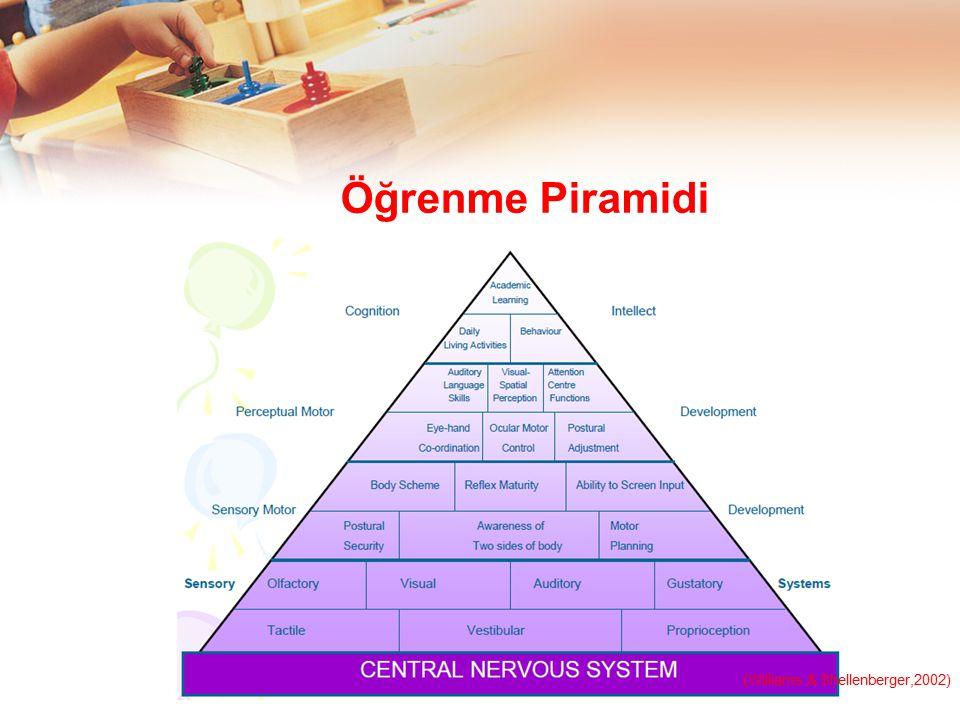 Öğrenme Piramidi (Williams & Shellenberger,2002)