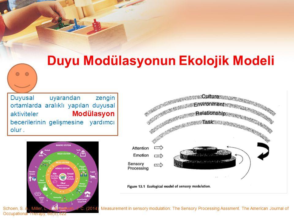 Duyu Modülasyonun Ekolojik Modeli