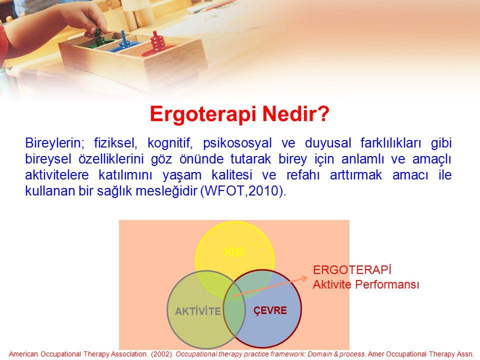 Ergoterapi Nedir