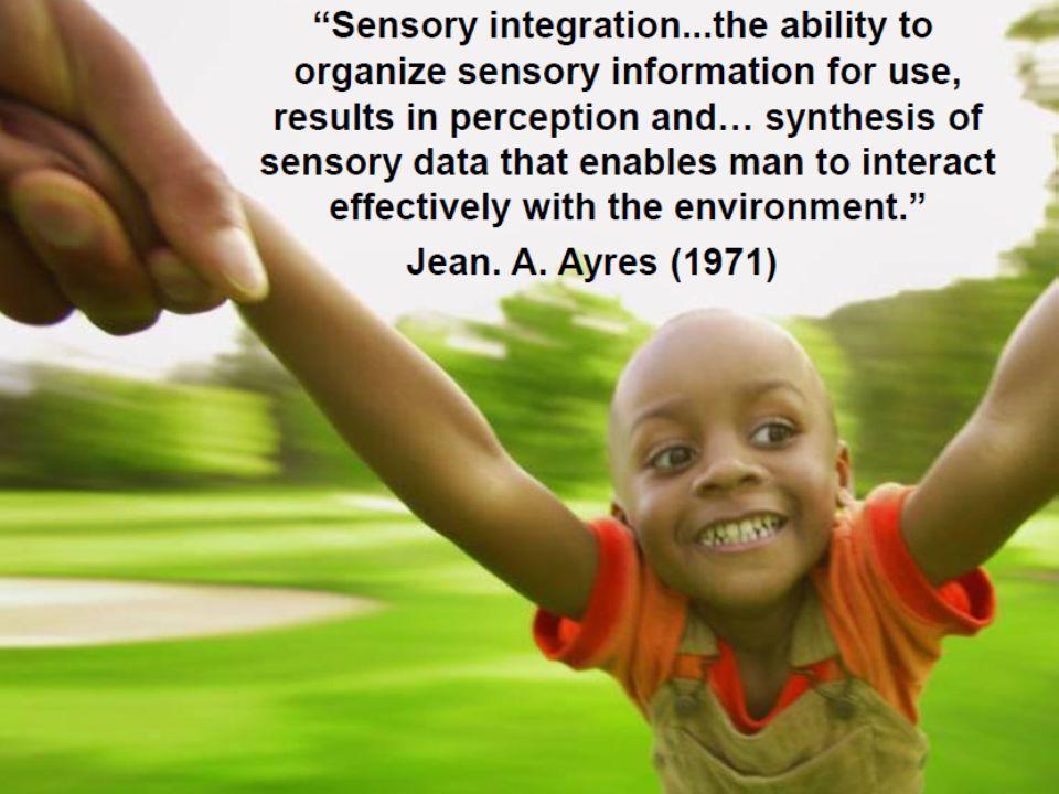 Duyu organlarımız aracılığı ile holistik gelişimin göstergesi olarak çevreye adaptif cevap verebiliyoruz!