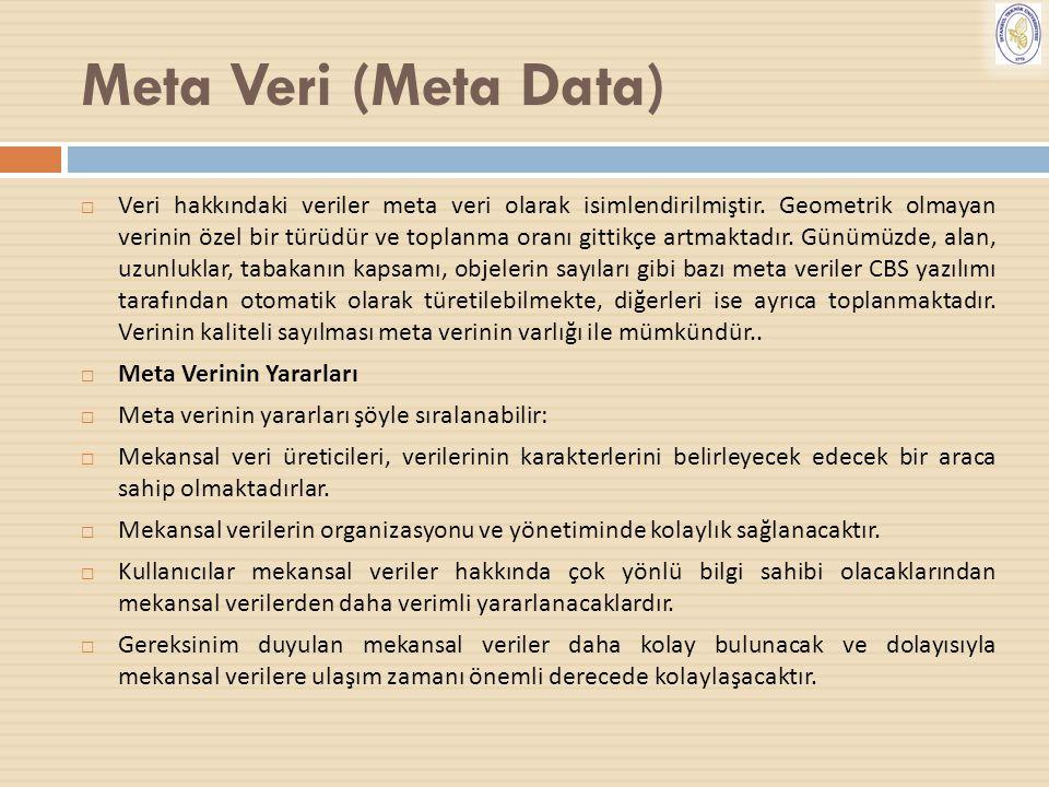 Meta Veri (Meta Data)