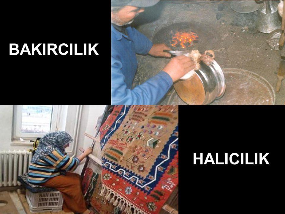BAKIRCILIK HALICILIK