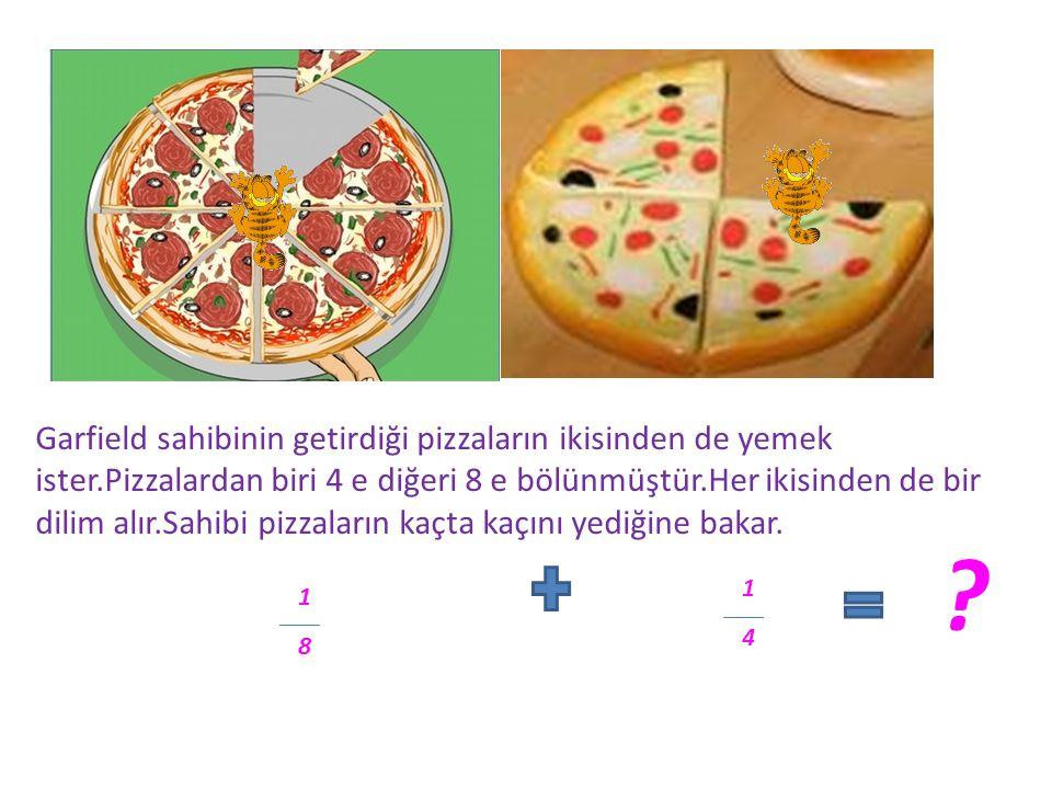 Garfield sahibinin getirdiği pizzaların ikisinden de yemek ister