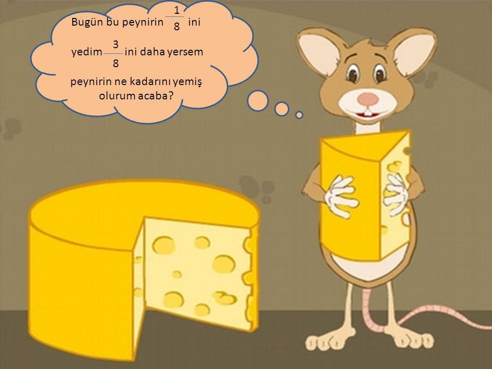 peynirin ne kadarını yemiş olurum acaba