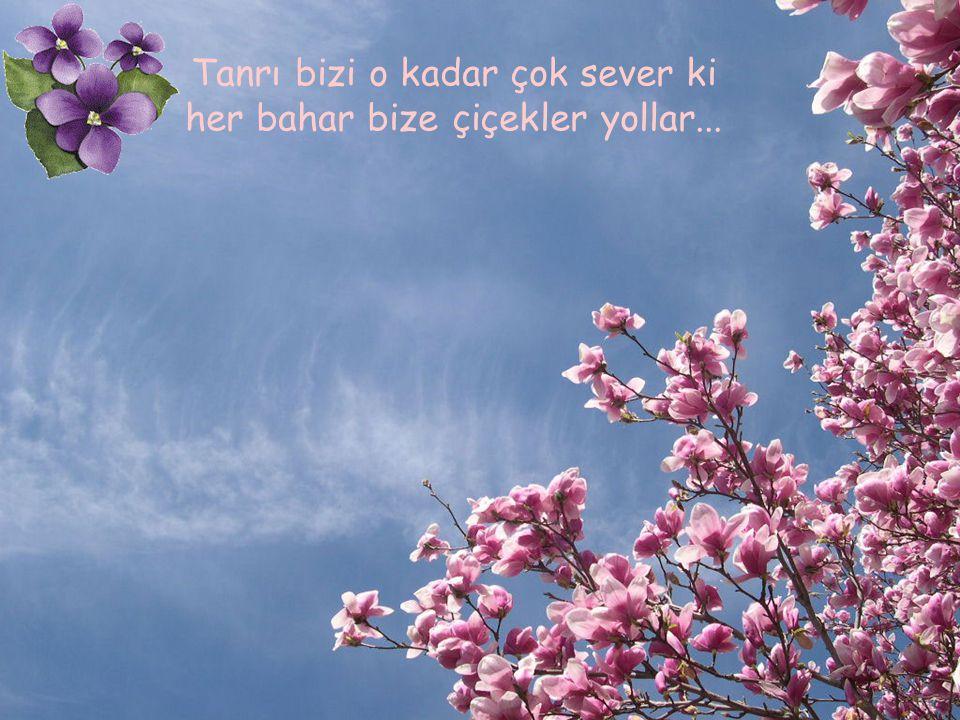 Tanrı bizi o kadar çok sever ki her bahar bize çiçekler yollar...