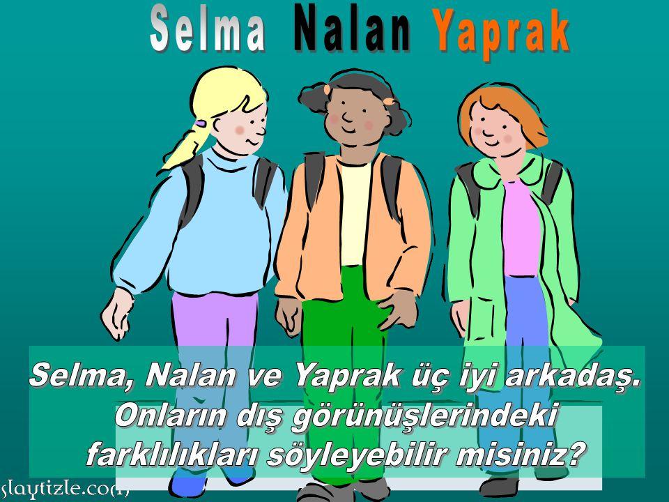 Selma, Nalan ve Yaprak üç iyi arkadaş. Onların dış görünüşlerindeki