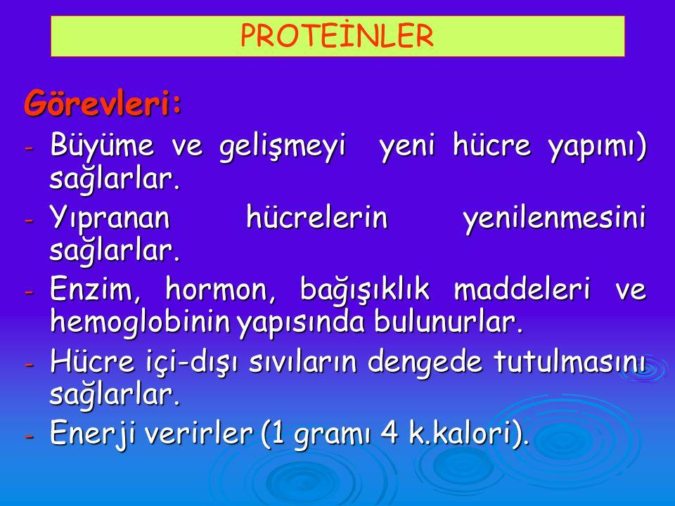 Görevleri: PROTEİNLER