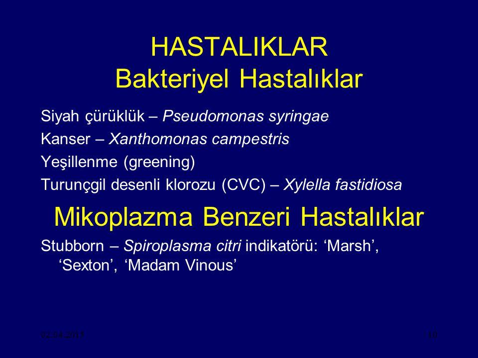 HASTALIKLAR Bakteriyel Hastalıklar