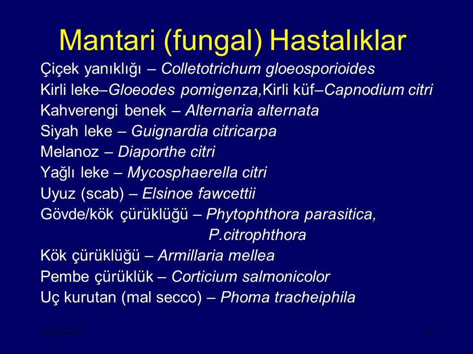 Mantari (fungal) Hastalıklar