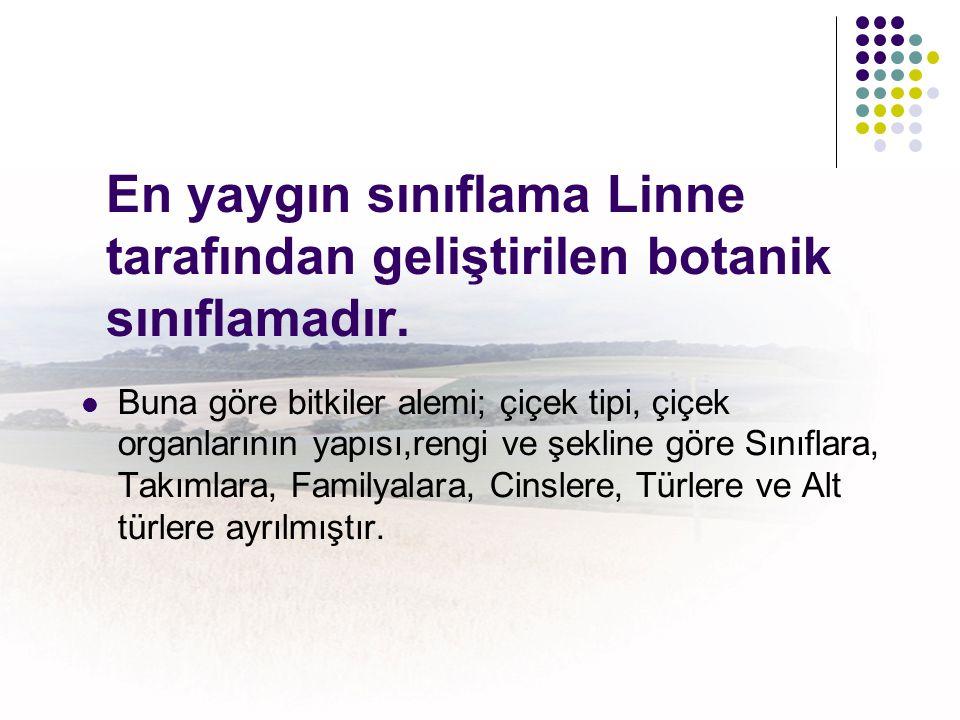 En yaygın sınıflama Linne tarafından geliştirilen botanik sınıflamadır.