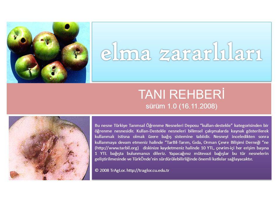 elma zararlıları TANI REHBERİ sürüm 1.0 (16.11.2008)