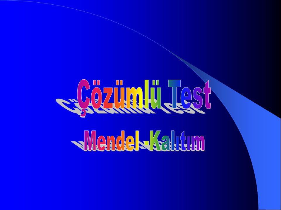 Çözümlü Test Mendel -Kalıtım