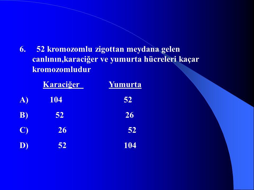 6. 52 kromozomlu zigottan meydana gelen canlının,karaciğer ve yumurta hücreleri kaçar kromozomludur