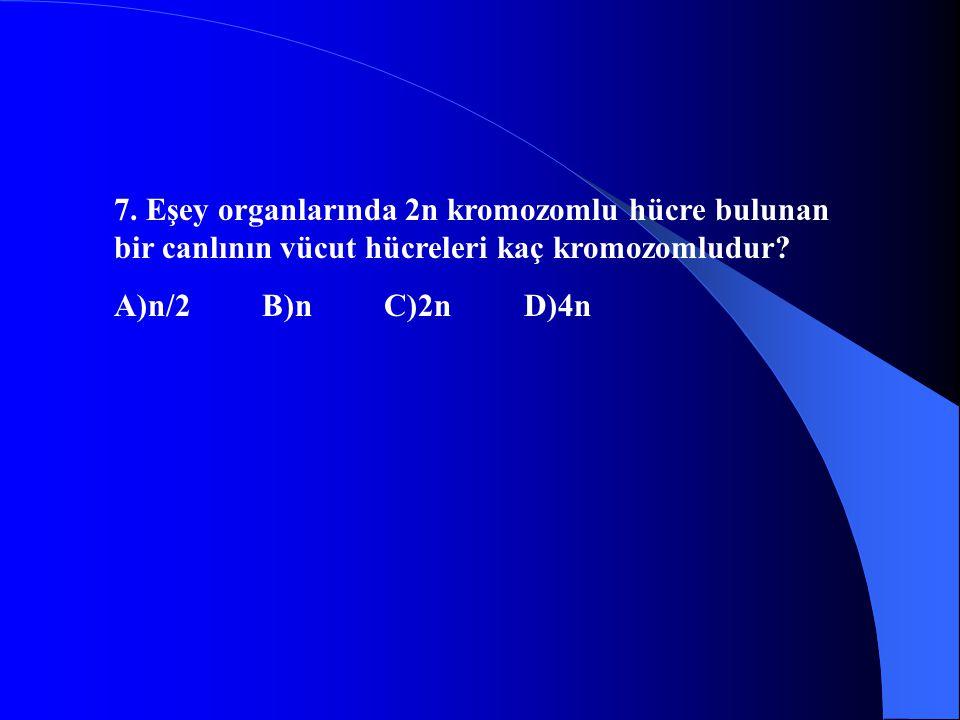 7. Eşey organlarında 2n kromozomlu hücre bulunan bir canlının vücut hücreleri kaç kromozomludur