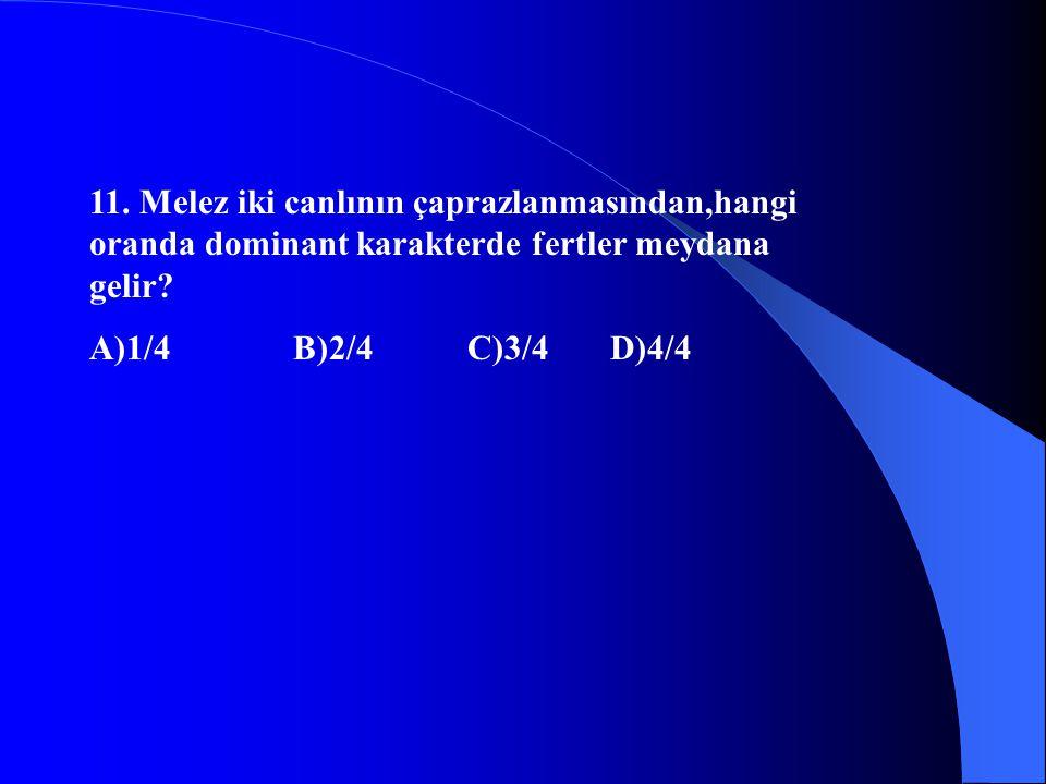 11. Melez iki canlının çaprazlanmasından,hangi oranda dominant karakterde fertler meydana gelir