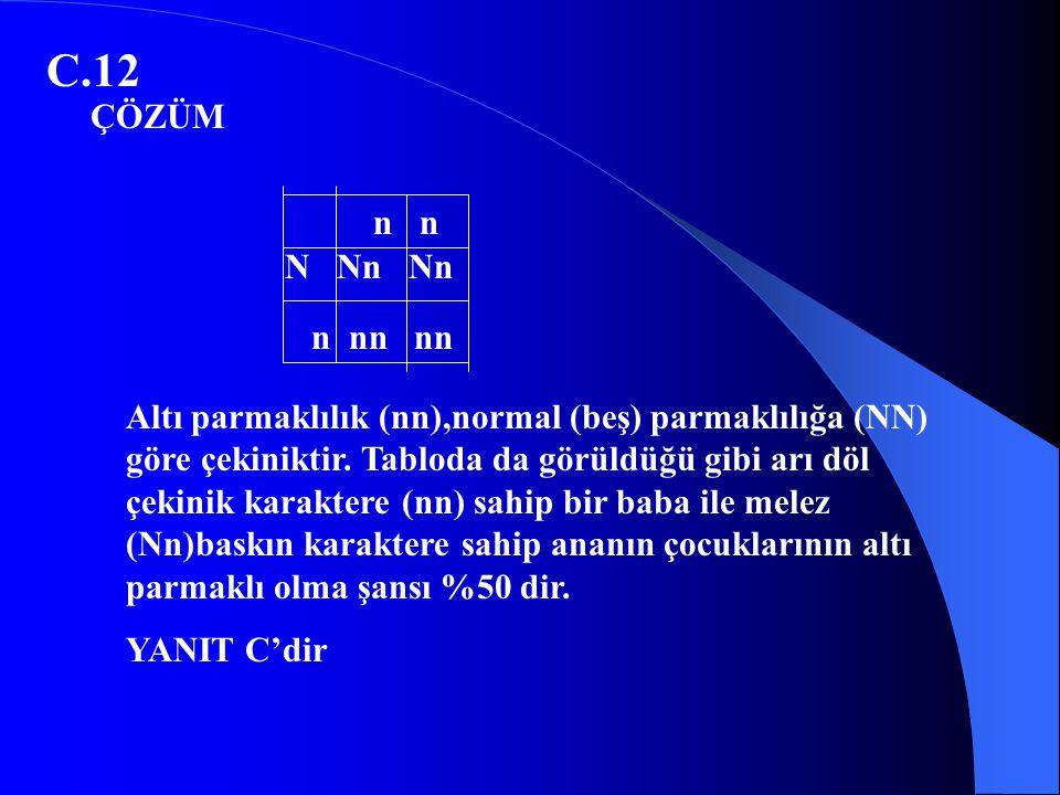 C.12 ÇÖZÜM. n n. N Nn Nn. n nn nn.