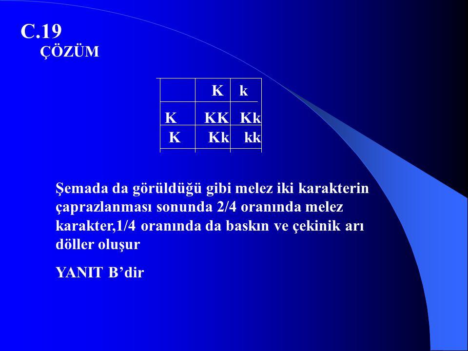 C.19 ÇÖZÜM. K k. K KK Kk. K Kk kk.