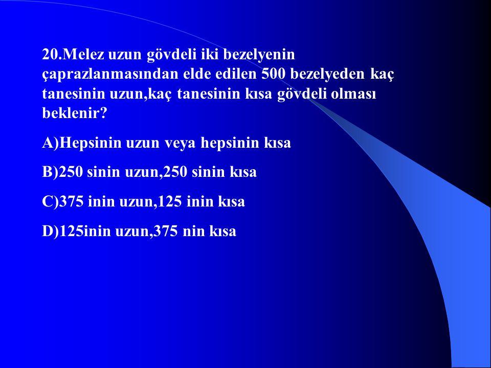 20.Melez uzun gövdeli iki bezelyenin çaprazlanmasından elde edilen 500 bezelyeden kaç tanesinin uzun,kaç tanesinin kısa gövdeli olması beklenir