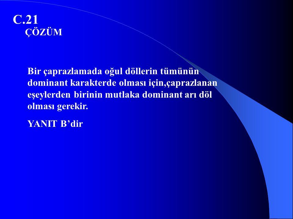 C.21 ÇÖZÜM.