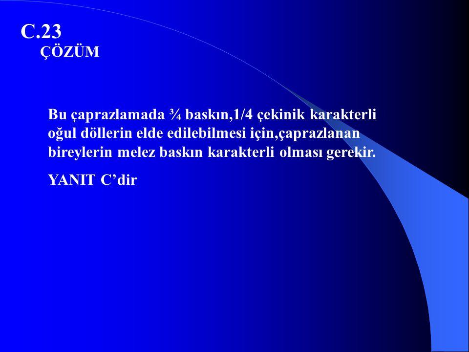 C.23 ÇÖZÜM.