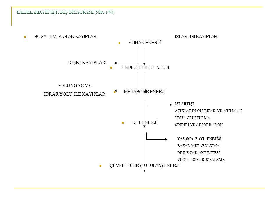 BALIKLARDA ENEJİ AKIŞ DİYAGRAMI (NRC,1993)