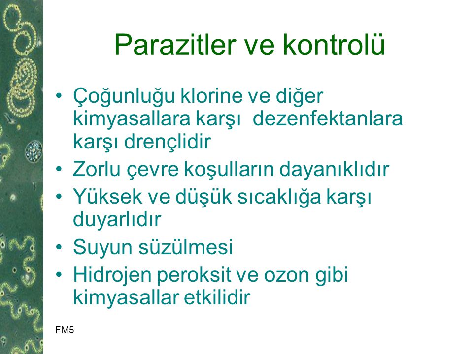 Parazitler ve kontrolü