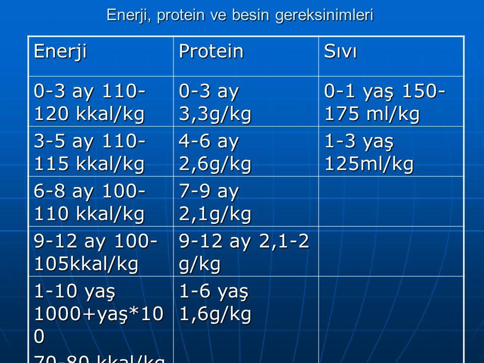Enerji, protein ve besin gereksinimleri