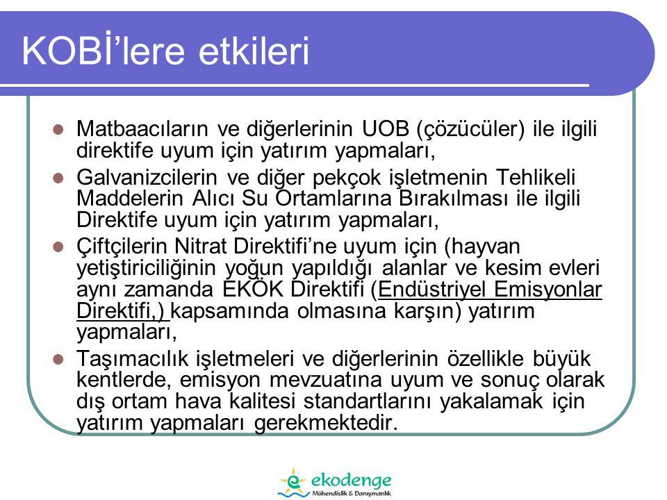 KOBİ'lere etkileri Matbaacıların ve diğerlerinin UOB (çözücüler) ile ilgili direktife uyum için yatırım yapmaları,