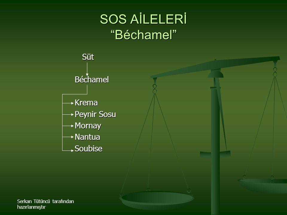 SOS AİLELERİ Béchamel