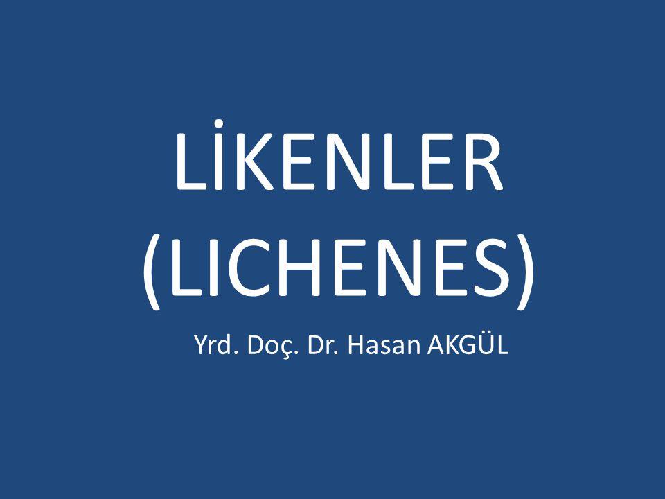 LİKENLER (LICHENES) Yrd. Doç. Dr. Hasan AKGÜL
