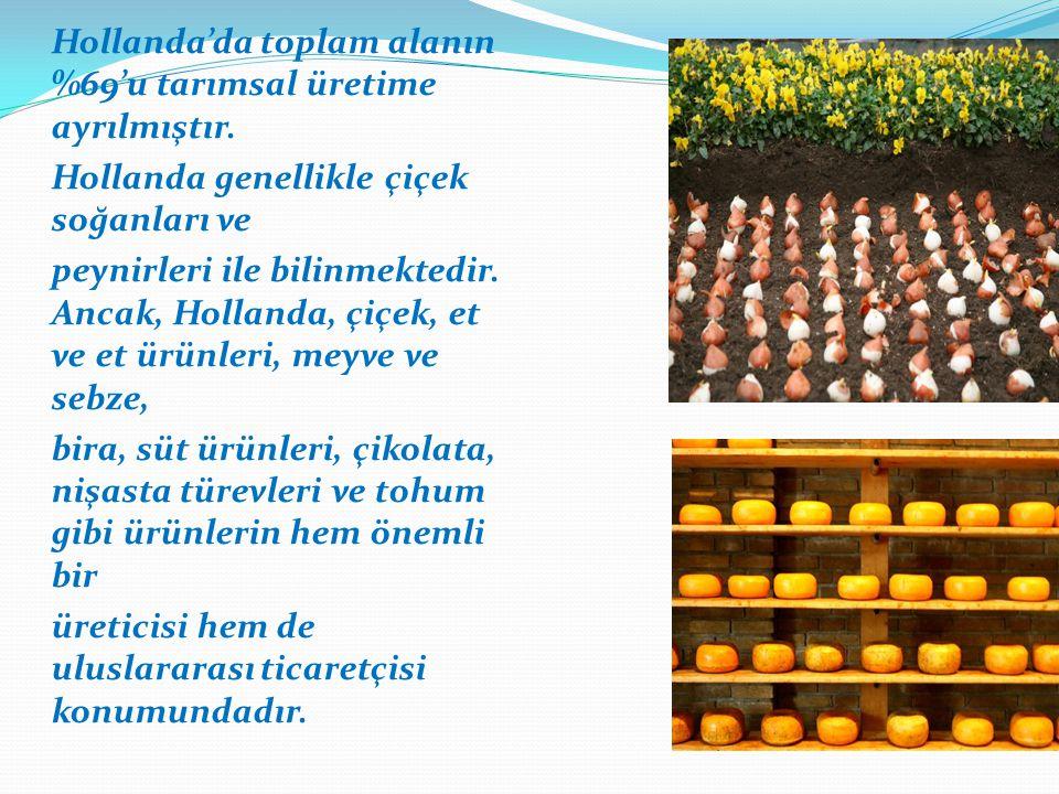 Hollanda'da toplam alanın %69'u tarımsal üretime ayrılmıştır.