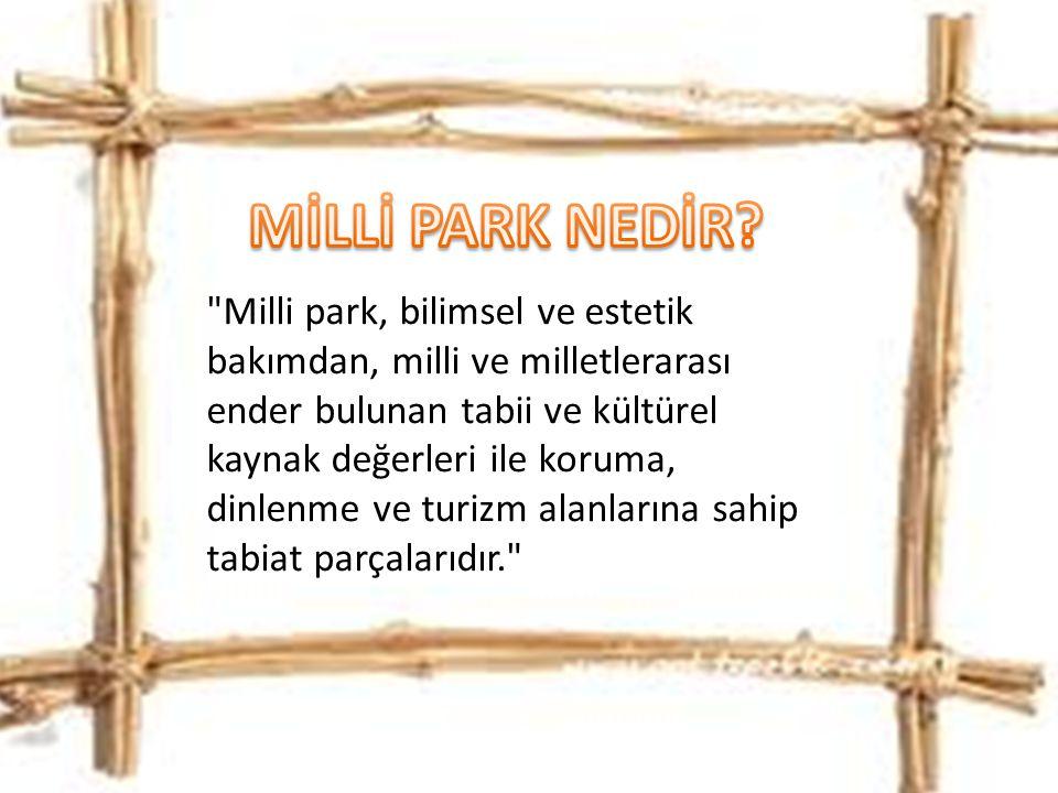 MİLLİ PARK NEDİR
