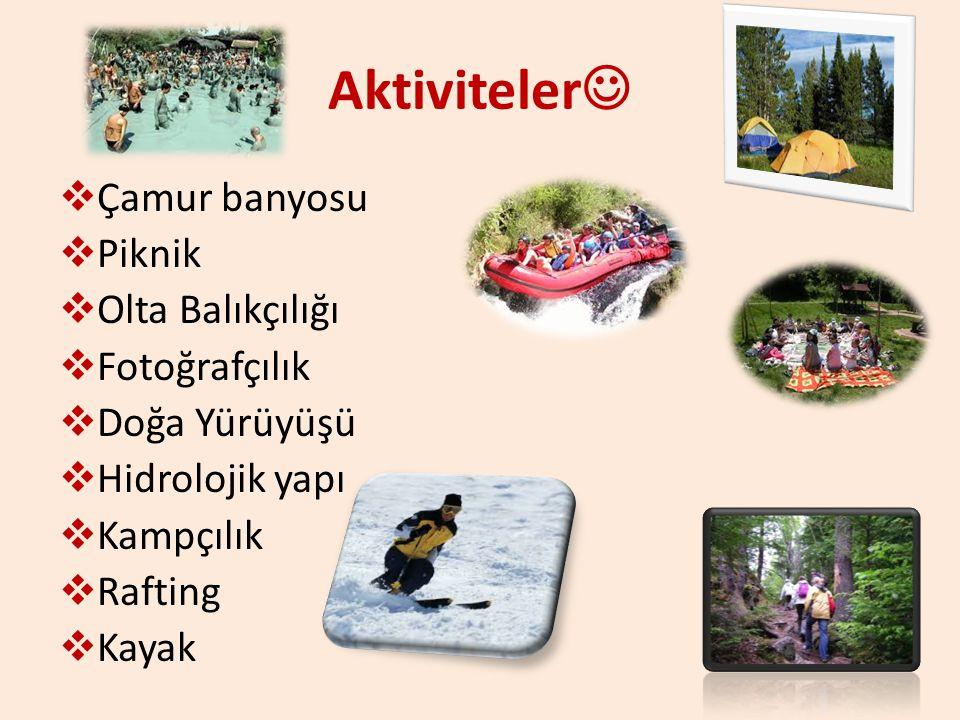 Aktiviteler Çamur banyosu Piknik Olta Balıkçılığı Fotoğrafçılık