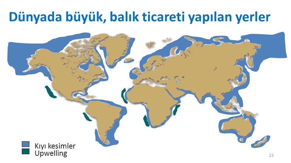 Dünyada büyük, balık ticareti yapılan yerler