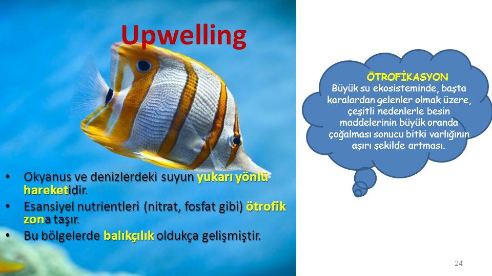 Upwelling Okyanus ve denizlerdeki suyun yukarı yönlü hareketidir.