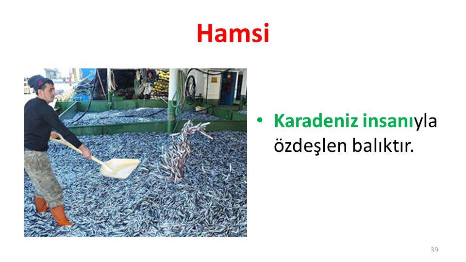 Hamsi Karadeniz insanıyla özdeşlen balıktır.